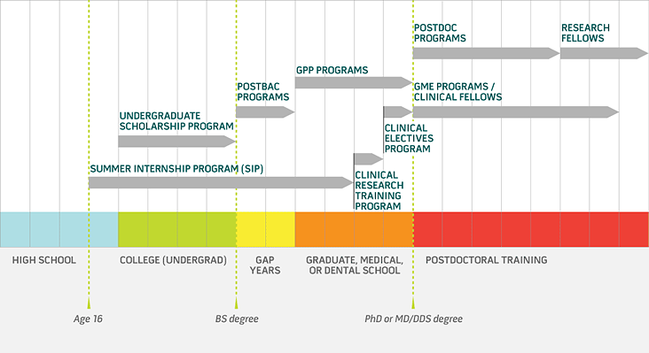 Visual guide to NIH training programs