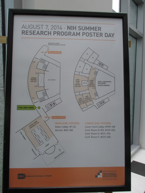 Summer Poster Day 2014