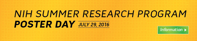 Summer Poster Day Banner 2016