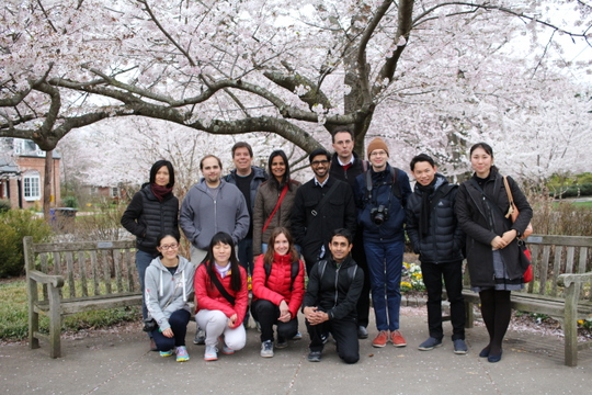 Visiting Fellows and Cherry Blossoms at Kenwood, spring 2017